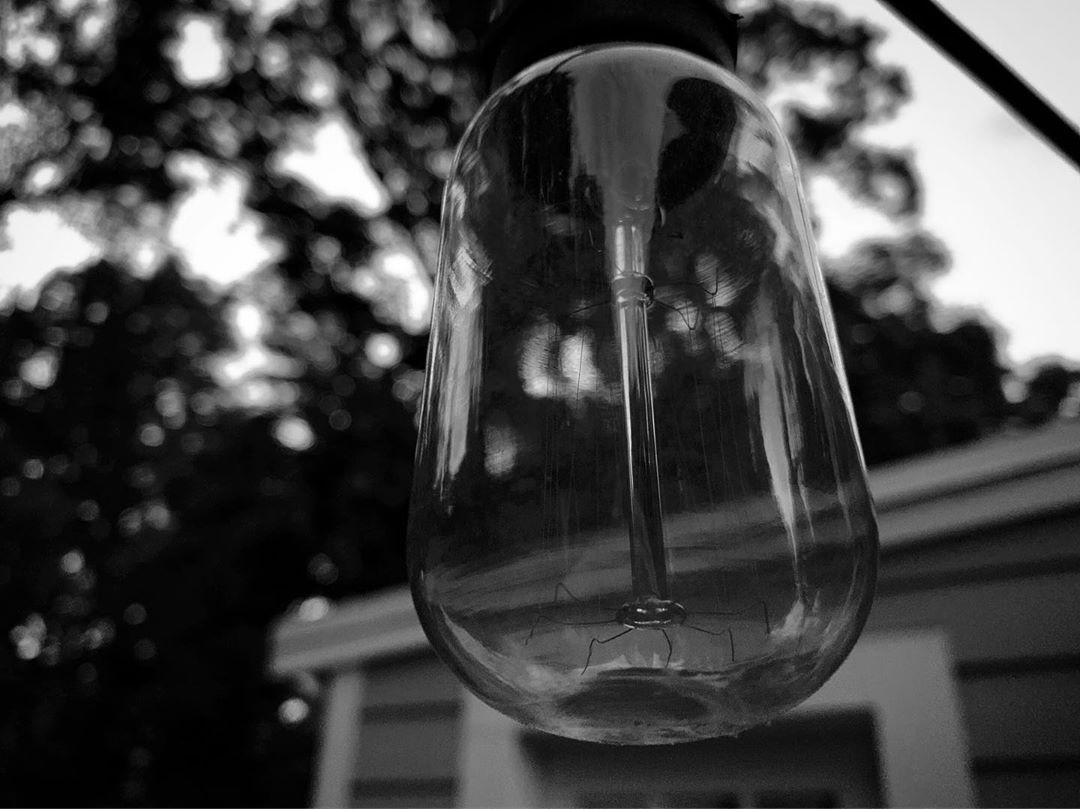 black and white photo, of edison style bulb on our back porch